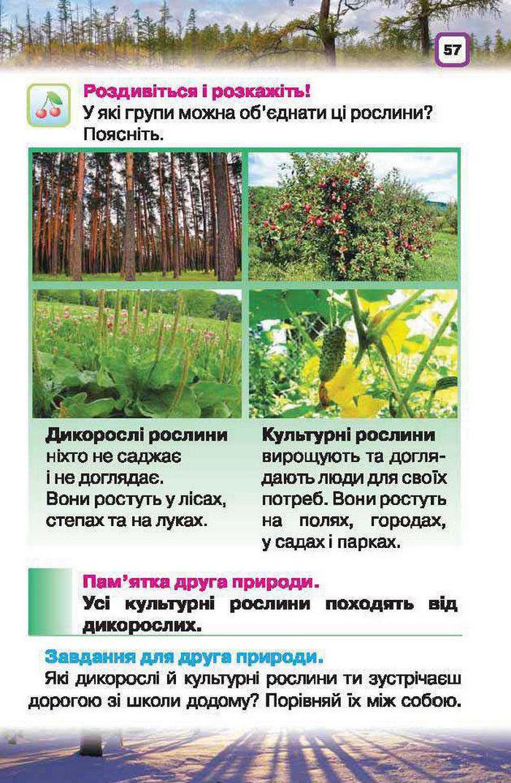Підручник Природознавство 1 клас Грущинська